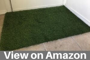 Best Fake Grass for Dogs