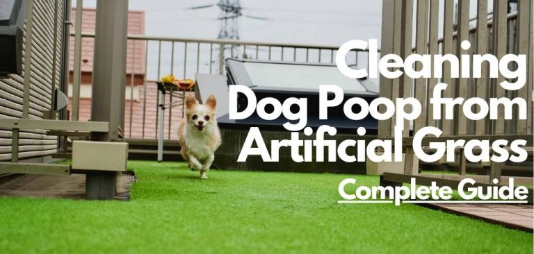 how to clean artificial grass dog poop